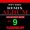 Studio Remix Album: Greatest Hits, Vol. 9 - Kushingham