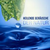 Heilende Geräusche der Natur - Tiefenentspannung Atmosphäre für Wellness & Regeneration, Ruhige Musik für Massage, Entspannungsmusik & Meditation