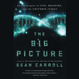 The Big Picture: On the Origins of Life, Meaning, and the Universe Itself (Unabridged) audiobook