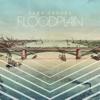 Floodplain - Sara Groves