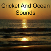 Cricket and Ocean Sounds