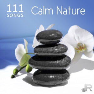 Various Artists - 111 Songs Calm Nature, Relaxing Ocean Waves - Deep Zen Meditation Music with Vibrational Healing, Ambient Sleep Music, Massage, Yoga and Spa
