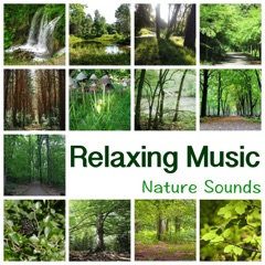 Relaxing Music – New Age Music for Yoga Meditation, Reiki, Ayurveda, Deep Sleep, Study, Reading, Concentration, Learning, Massage and Spa, Fall Asleep
