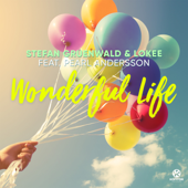 Wonderful Life (feat. Pearl Andersson) [Extended Mix] - Stefan Gruenwald & Lokee