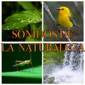 Canto De Los Pájaros Tropicales - Sonidos de la naturaleza de relajación
