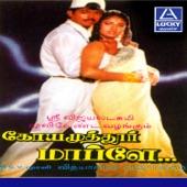 Vijay - Pappampatti