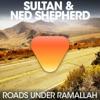 Roads Under Ramallah EP