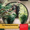The Qigong Concertos (Music for All Routines) - Naylor & McKenna