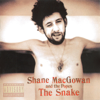 Shane MacGowan, Sinéad O'Connor & The Popes - Haunted artwork