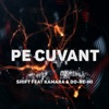 Pe Cuvant (feat. Kamara & Do-Re-Mi) - Single, Shift