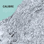 Calibre - think on