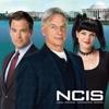 NCIS, Season 11 - Synopsis and Reviews
