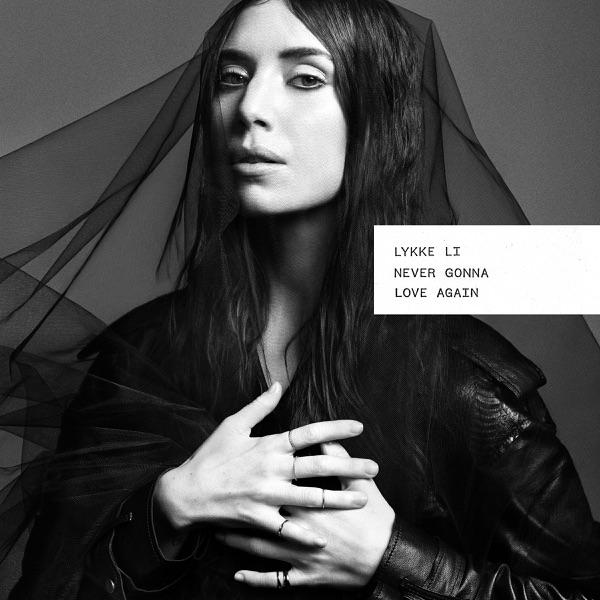 Never Gonna Love Again (Re Edit) - Single