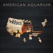 American Aquarium - Southern Sadness