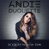 On n'se dit pas qu'on s'aime - Andie Duquette
