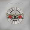 Guns N' Roses - Greatest Hits ilustración