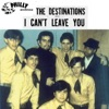 I Can't Leave You - Single