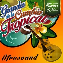 Afrosound La Danza De Los Mirlos