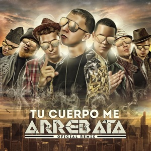 Tu Cuerpo Me Arrebata (Remix) [feat. J King, Maximan, D.Ozi, J Alvarez, Franco el Gorila & Jowel] - Single Mp3 Download