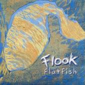 Flook - Sligo Reel