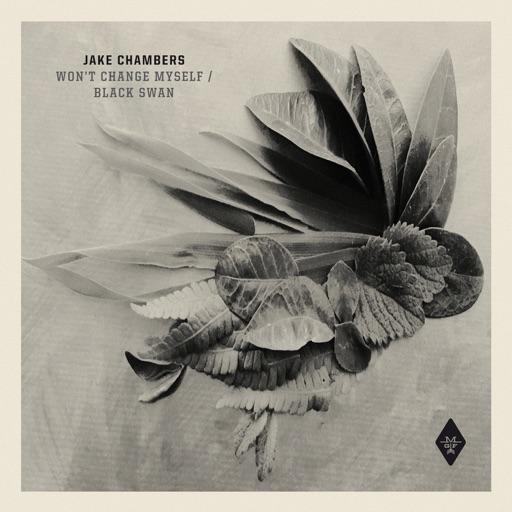 Won't Change Myself / Black Swan - Single by Jake Chambers