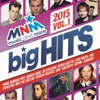 Various Artists - MNM Big Hits 2015.1 artwork