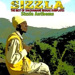The Best of Shashamane Reggae Dubplates (Sizzla Anthems)