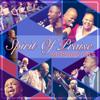 Spirit of Praise - E Jwale artwork
