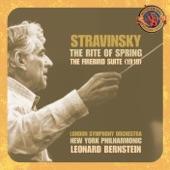 Leonard Bernstein - Introduction