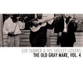 Gid Tanner & His Skillet Lickers: The Old Gray Mare, Vol. 4