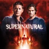 Supernatural, Season 5 wiki, synopsis