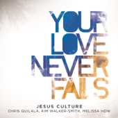 Your Love Never Fails (feat. Chris Quilala) [Live]