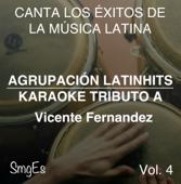 Instrumental Karaoke Series: Vicente Fernandez, Vol. 4 (Karaoke Version)