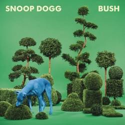 View album BUSH