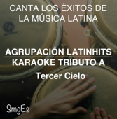 Instrumental Karaoke Series: Tercer Cielo (Karaoke Version)