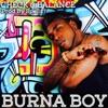 Check and Balance - Single, Burna Boy