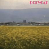 เวลาเธอยิ้ม (You Had Me At Hello) - Polycat