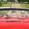 I Don't Deserve You (Remixes), Paul van Dyk & Plumb