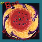 The B-52's - Wig