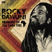 Rocky Dawuni - Shine a Light