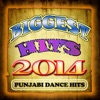 Biggest Hits 2014 - Punjabi Dance Hits
