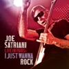 Live In Paris: I Just Wanna Rock, Joe Satriani