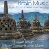 Brain Music - Music for Study, Revision and Learning - Concentration Music