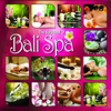 The Very Best of Bali Spa - See New Project