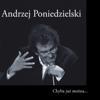Andrzej Poniedzielski - Tęsknij artwork