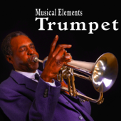 Muted Last Post Played on a Trumpet