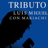 Tributo a Luis Miguel Con Mariachi