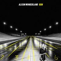 Run (Blaynoise rmx) - ALISON WONDERLAND