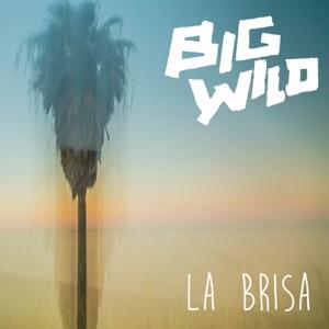 La Brisa - Single Mp3 Download