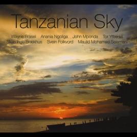 Tanzanian Sky by Various Artists